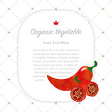 Colorful watercolor texture nature organic fruit memo frame. Colorful watercolor texture nature organic fruit memo frame red jalapeno pepper Royalty Free Stock Images