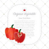Colorful watercolor texture nature organic fruit memo frame. Colorful watercolor texture nature organic fruit memo frame red Scotch bonnet pepper Royalty Free Stock Photo