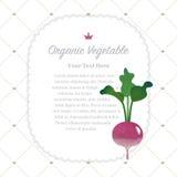 Colorful watercolor texture nature organic fruit memo frame turn. Ip stock illustration