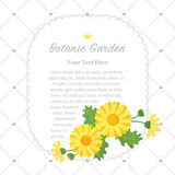 Colorful watercolor texture vector nature botanic garden memo fr. Ame asteraceae yellow daisy Royalty Free Stock Images