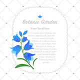 Colorful watercolor texture vector nature botanic garden memo fr. Ame bluebell flower Stock Photography
