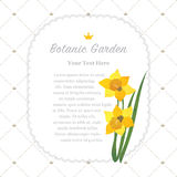 Colorful watercolor texture vector nature botanic garden memo fr. Ame daffodil Stock Photography