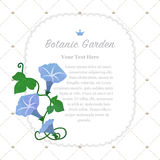 Colorful watercolor texture vector nature botanic garden memo fr. Ame light blue morning glory Stock Images