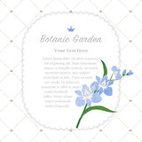 Colorful watercolor texture vector nature botanic garden memo fr Royalty Free Stock Images