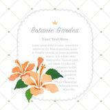 Colorful watercolor texture vector nature botanic garden memo fr. Ame orange hibiscus Stock Photography