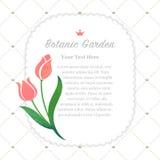 Colorful watercolor texture vector nature botanic garden memo fr. Ame pink tulip Stock Photography