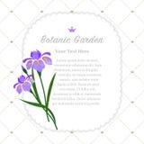 Colorful watercolor texture vector nature botanic garden memo fr Royalty Free Stock Photos