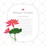 Colorful watercolor texture vector nature botanic garden memo fr. Ame red lotus Royalty Free Stock Photo
