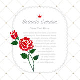 Colorful watercolor texture vector nature botanic garden memo fr. Ame red rose Royalty Free Stock Images