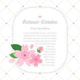 Colorful watercolor texture vector nature botanic garden memo fr. Ame sakura cherry blossom Royalty Free Stock Photo