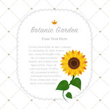 Colorful watercolor texture vector nature botanic garden memo fr. Ame sunflower Stock Image