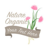 Colorful watercolor texture vector nature organic vegetable   Stock Images
