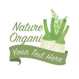 Colorful watercolor texture vector nature organic vegetable   Stock Photos