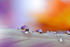 Colorful Waterdrops... Royalty Free Stock Image