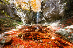 Colorful waterfall Royalty Free Stock Image