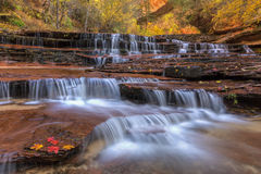 Colorful Waterfall Strata on the Left Fork Stock Photography