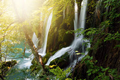 Colorful waterfalls in Plitvice lakes Royalty Free Stock Image