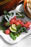 Colorful Watermelon Salad Stock Photography
