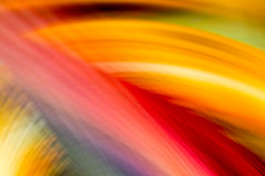 Colorful waves Stock Photography