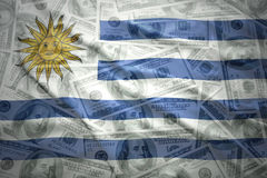 Colorful waving uruguayan flag on a  dollar money background Stock Photography