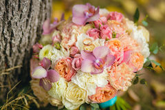 Colorful wedding bouquet on grass Stock Image