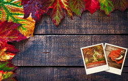 Colorful wet autumn leaves arranged on old wooden table Royalty Free Stock Image