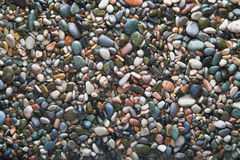 Colorful wet ocean pebble (background) Royalty Free Stock Photo