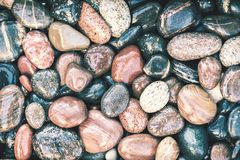 Colorful wet pebbles background Royalty Free Stock Photography
