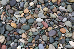 Colorful wet pebbles on the beach. Closeup of colorful wet pebbles on the beach, natural background Stock Image
