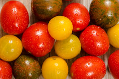 Colorful wet tomatoes in yellow, red and green Stock Photography