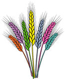 Colorful wheat ears Stock Photos