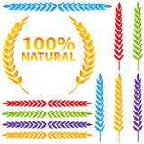 Colorful Wheat Icon Set Stock Images