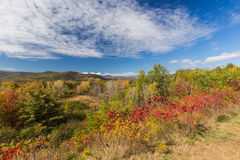 Colorful White mountain National forest in autumn, New  Hampshir Royalty Free Stock Image