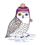 Colorful white owl in purple hat with pompon. Owl illustration. Colorful bird of white color in purple hat with strings and pompon. Ink vector illustration Stock Image