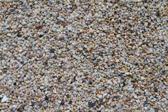 Colorful and white pebbles Royalty Free Stock Photos