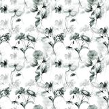 Colorful wild flowers. Seamless pattern, watercolor illustration Stock Images