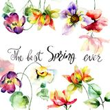 Colorful wild flowers with title the best spring ever. Watercolor illustration Royalty Free Stock Photos