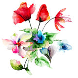 Colorful wild flowers Royalty Free Stock Image