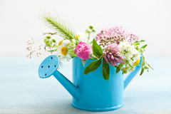 Colorful wildflowers in watering can Royalty Free Stock Photography