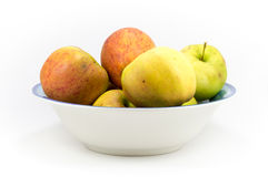Colorful windfall apples in a bowl on a white background. Royalty Free Stock Photo