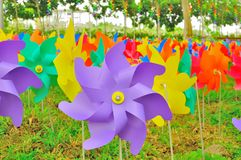 Colorful windmills sticked to the ground. Colorful windmills , grouped together in different color, at Putrajaya Malaysia Royalty Free Stock Photo