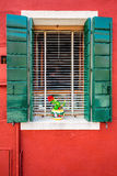 Colorful windos in Burano Stock Photos