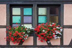 Colorful window with flowers in Strasbourg Stock Photos