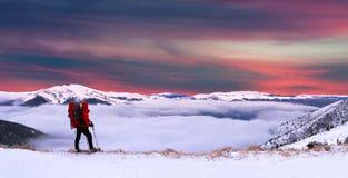 Colorful winter landscape Stock Photos