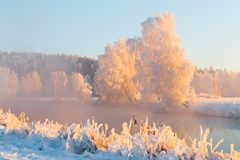 Colorful winter landscape with snow covered riversides. Beautiful winter nature. Trees branches covered with hoarfrost at dawn in royalty free stock image