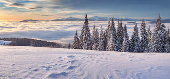 Colorful winter morning in mountains Stock Photography