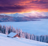 Colorful winter morning in the mountains. Stock Images