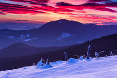 Colorful winter morning in the mountains. Dramatic overcast sky. Royalty Free Stock Photography