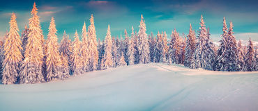 Colorful Winter Panorama Of Snowy Mountains. Stock Photo