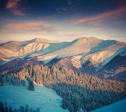 Colorful winter sunrise in еру  mountains. Royalty Free Stock Image